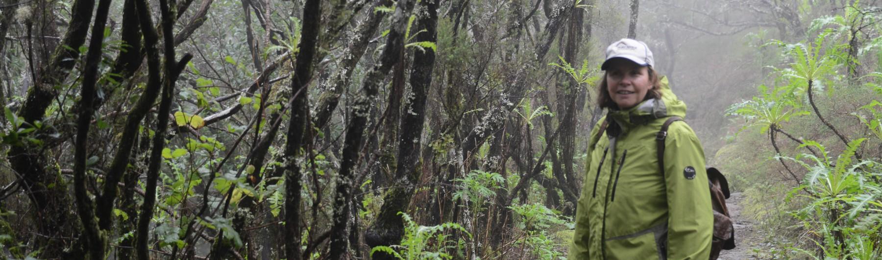Heidi Mühlenberg im Lorbeerwald von La Gomera